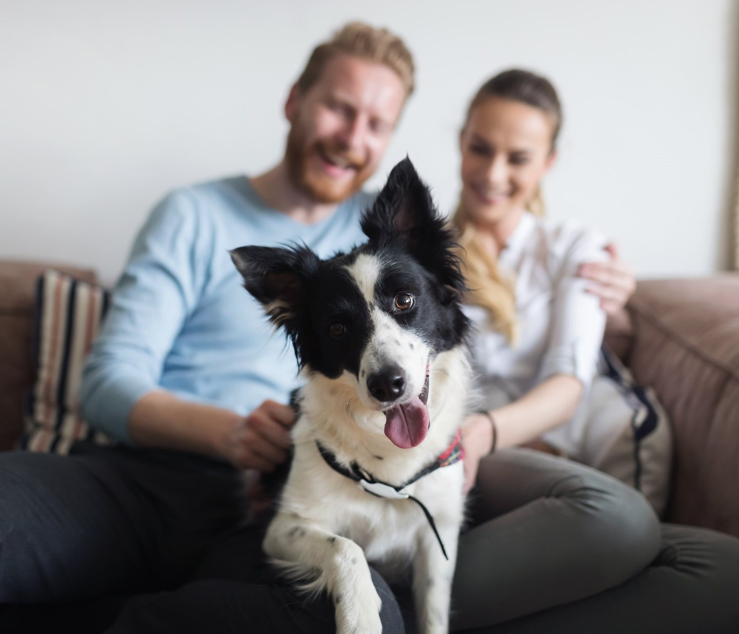 Couple Sitting on Couch with Dog In between