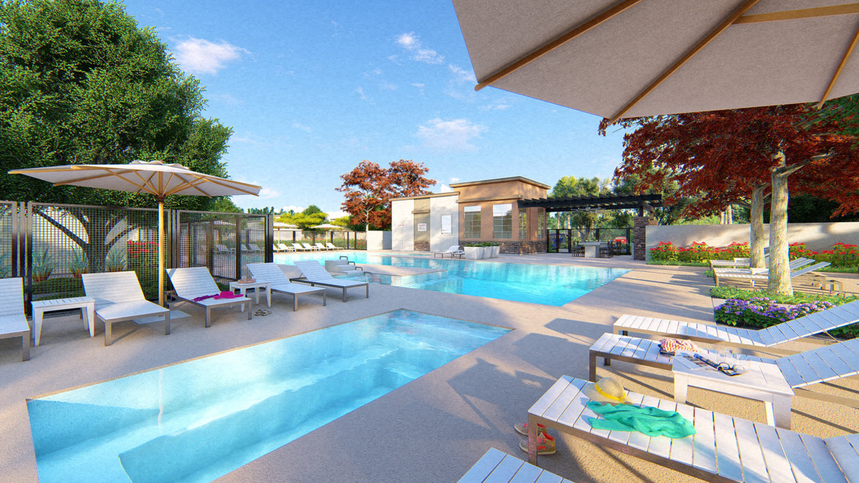 Luxury Apartments for Rent in Mesa, AZ - Hampton East Swimming Pool with Shaded Lounge Seating and Lush Landscaping