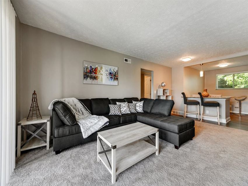 Spacious Living Room with Couch