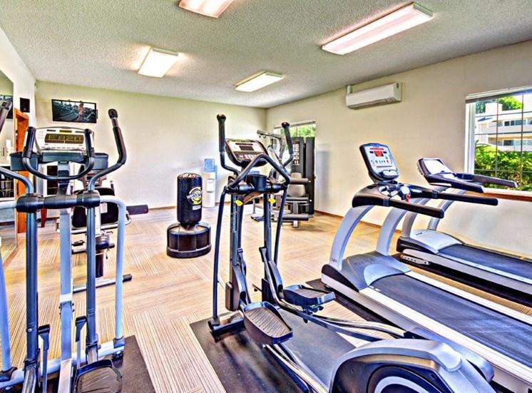 Maple Pointe Fitness Center Cardio Equipment