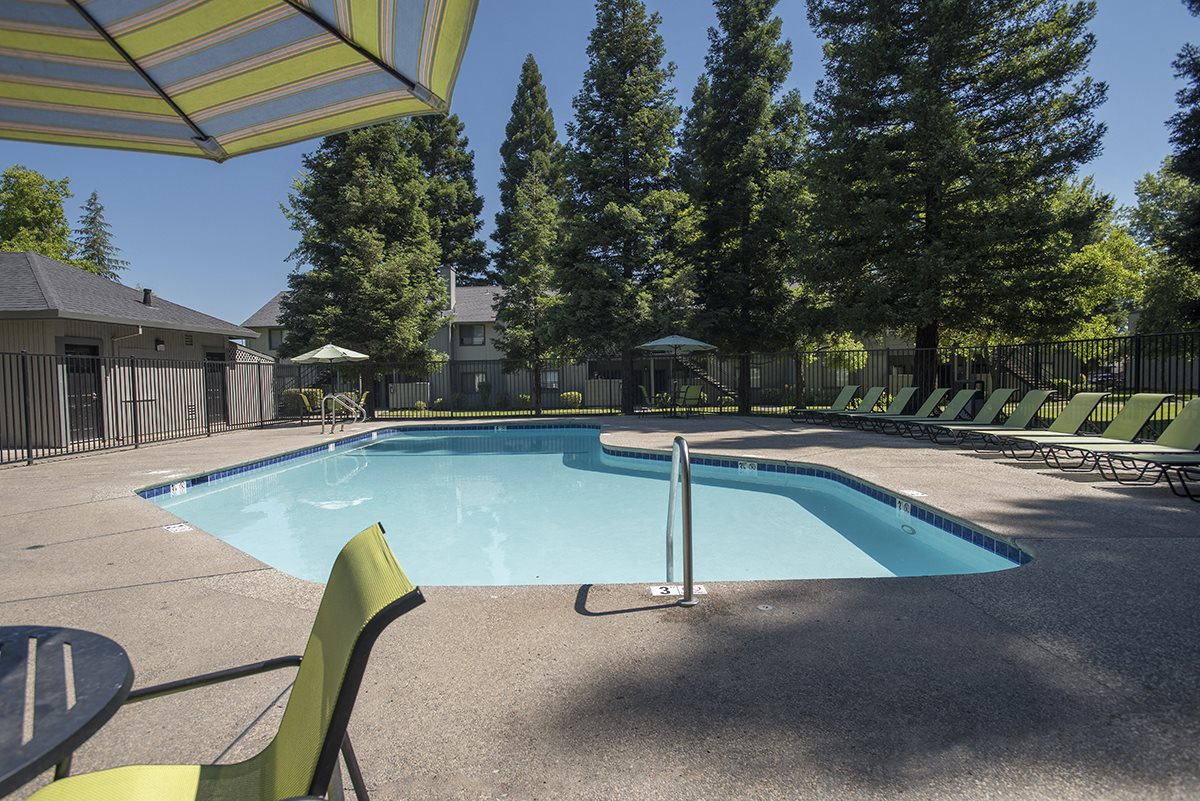 Pepperwood Pool Furniture and pool
