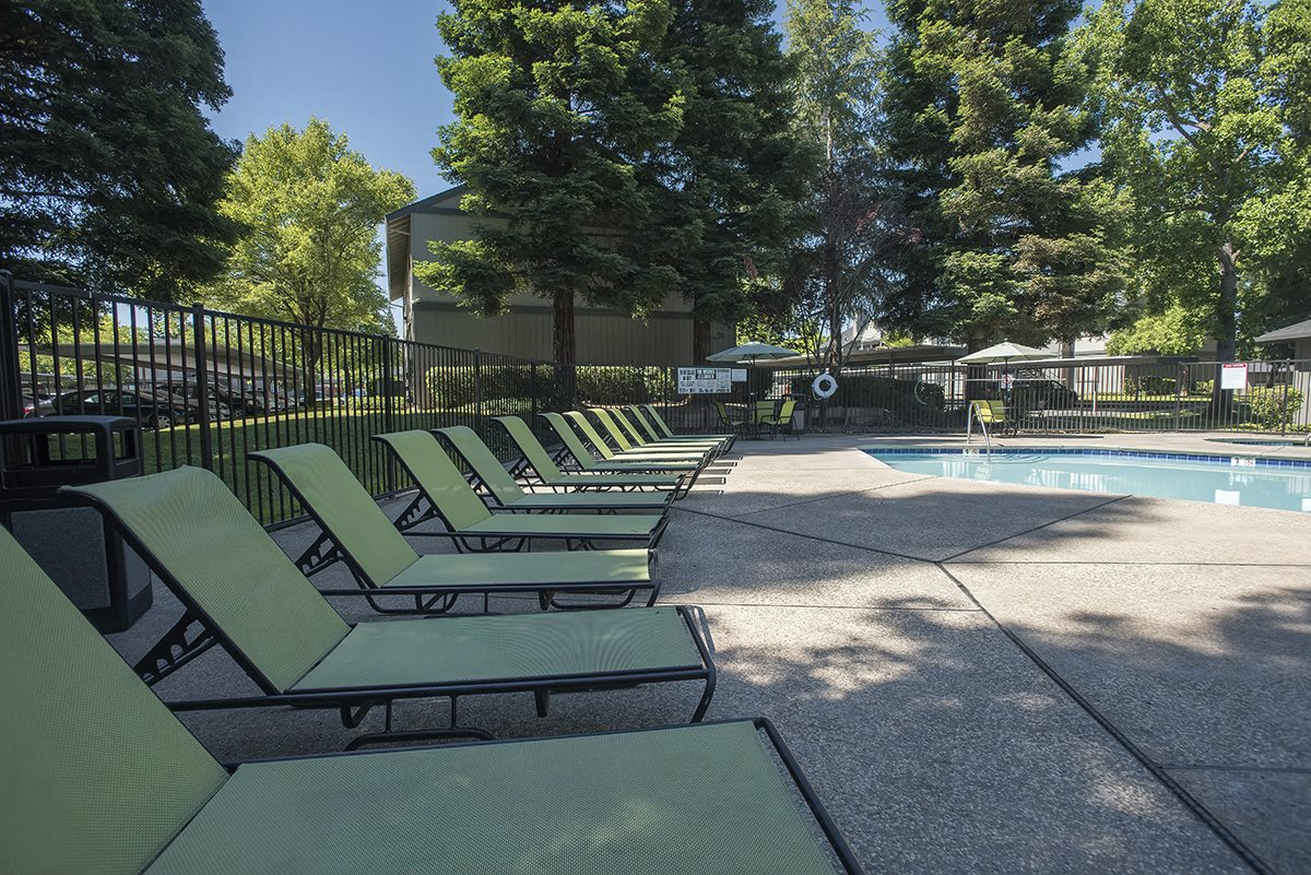 Pepperwood Pool Chaise Lounges