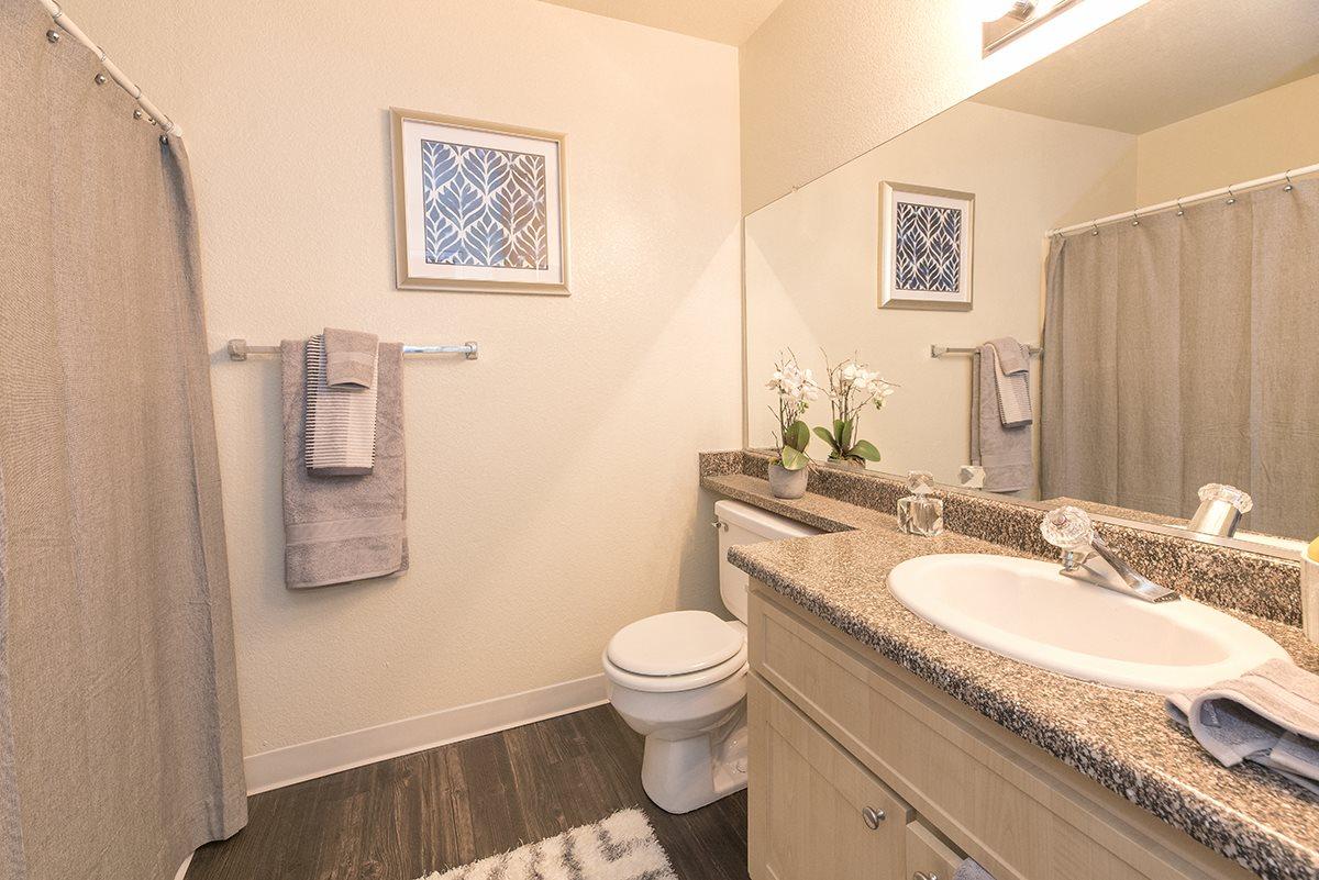 Rocklin Gold Model Upgraded Bathroom