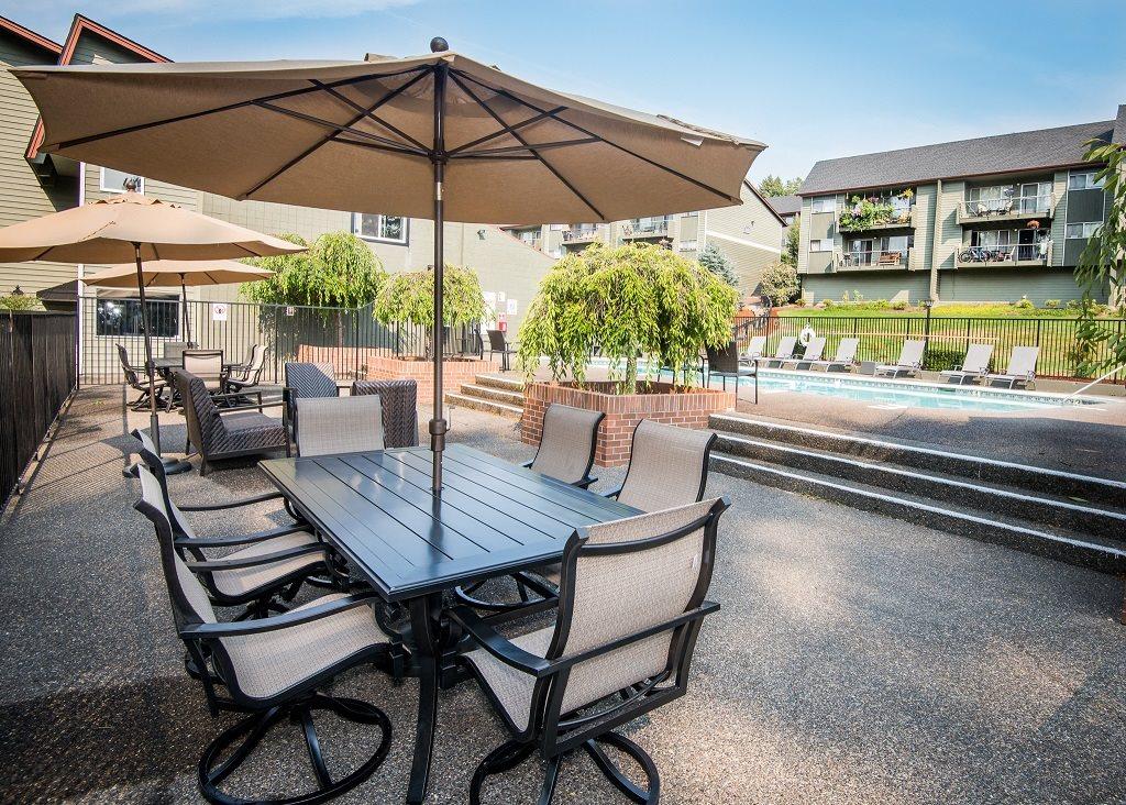 Shadow Hills Pool Furniture & Sun Umbrella