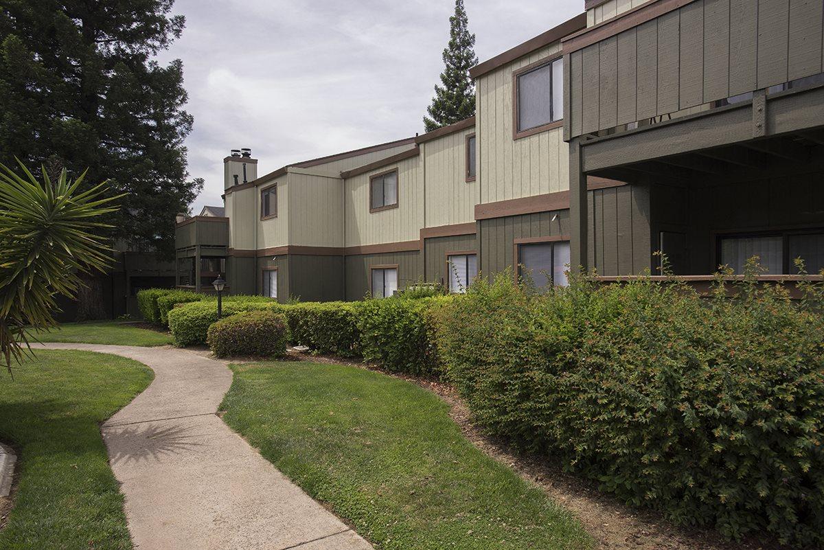 Sierra Glen Building Exteriors & Shrubs