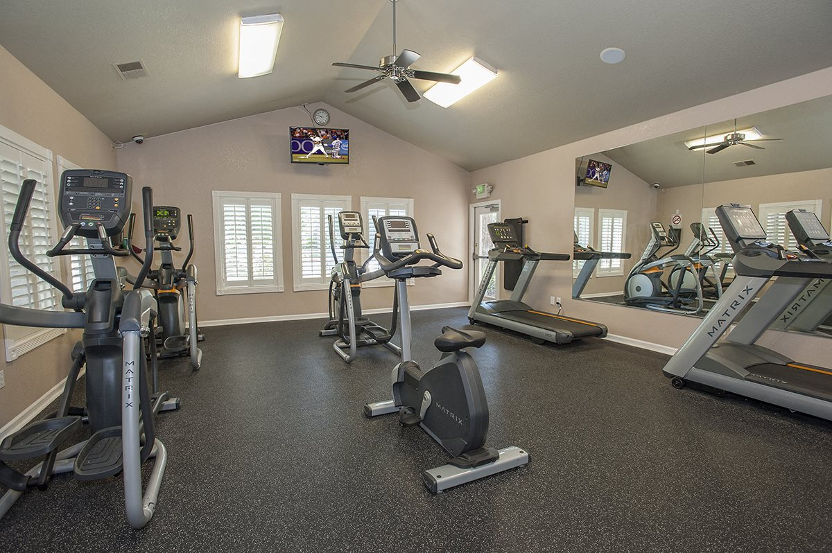 Stanford Heights Fitness Center Cardio Equipment & TV