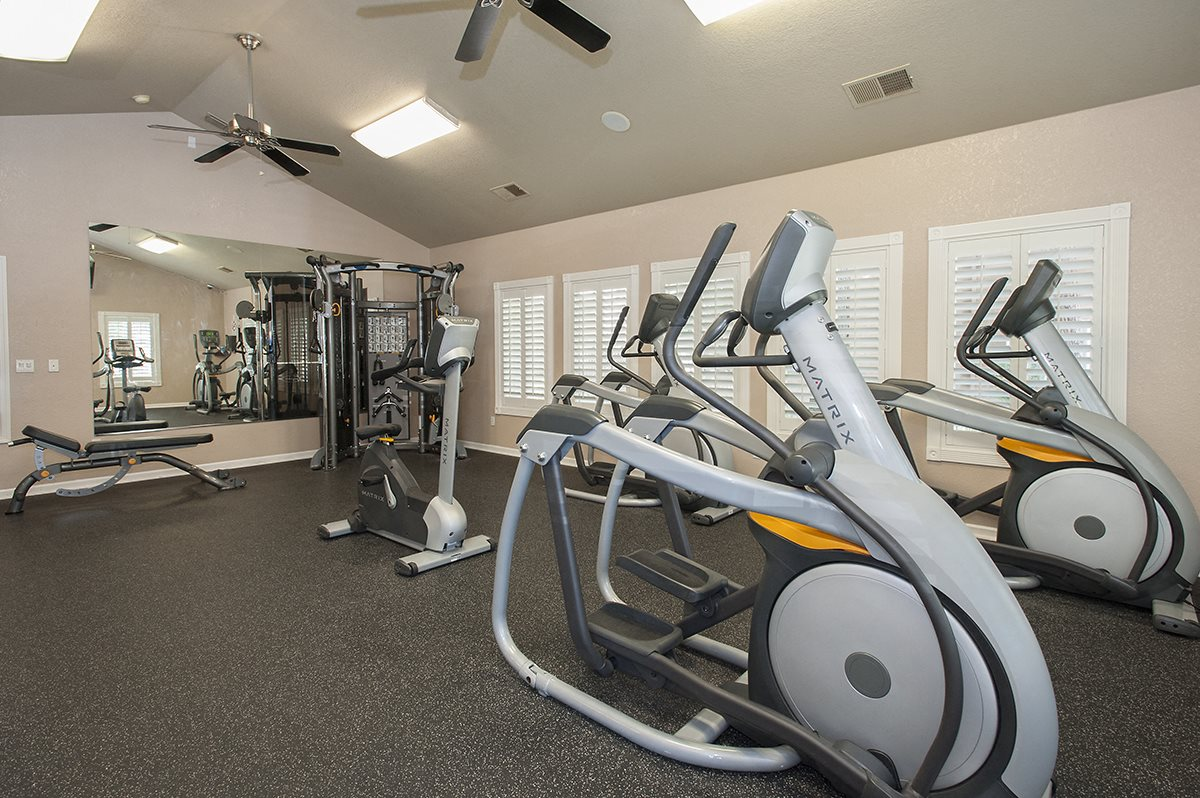 Stanford Heights Fitness Center Strength Equipment