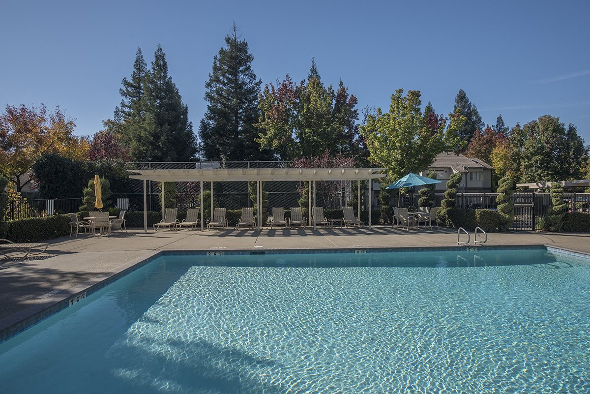 Stanford Heights Outdoor Swimming Pool