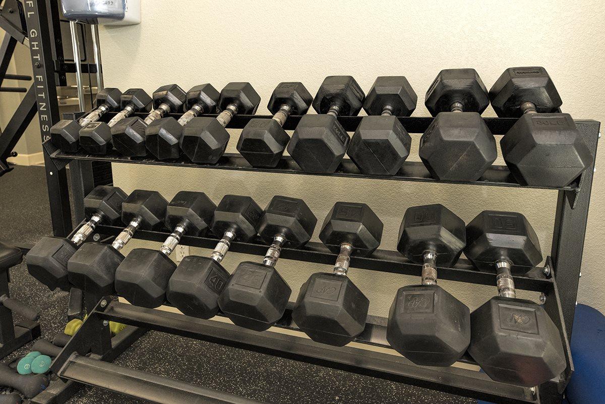 Stoneridge 24 Hour Fitness Center Free Weights