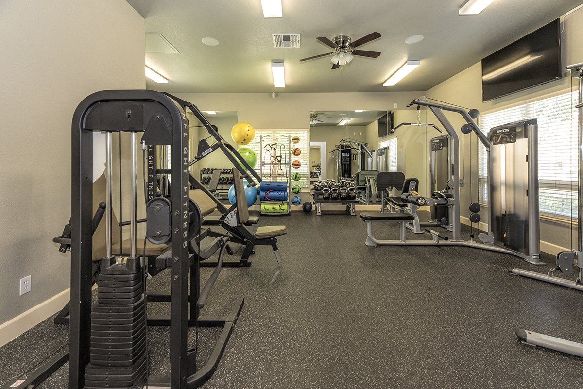 Stoneridge 24 Hour Fitness Center Weight Machines