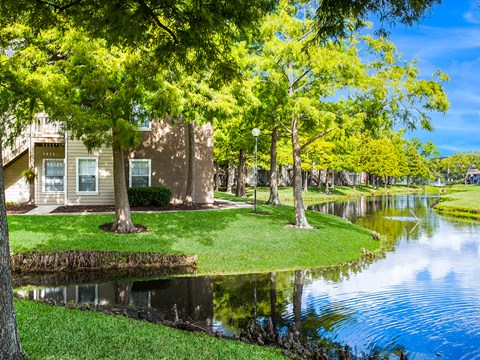 Breathtaking Pond-View at Green Tree Place, Jacksonville, 32256