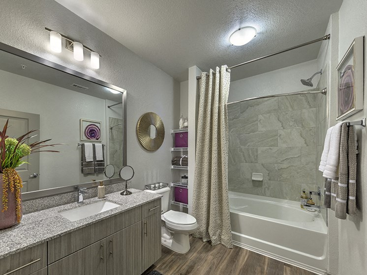 Bathroom With Bathtub at Integra Sunrise Parc, Kissimmee, 34746