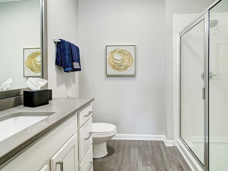 Park & Market renovated apartment bathroom