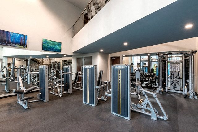 Fitness Center with Free Weights at Berkshire Chapel Hill, Chapel Hill, NC, 27514