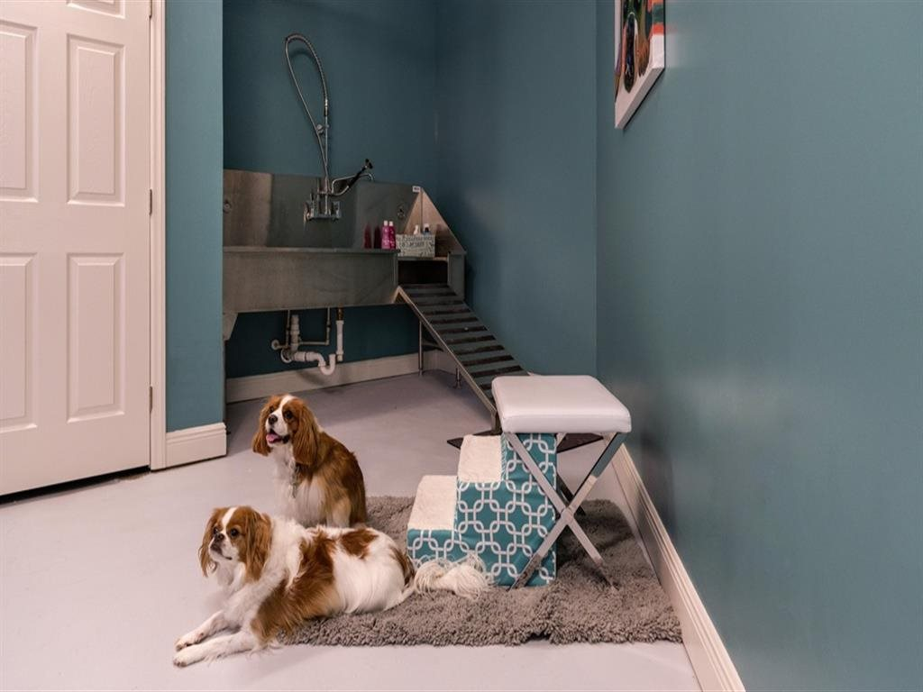 Pet-friendly pet spa at Berkshire Ninth Street, Durham, NC