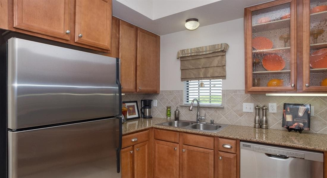 Refrigerator And Kitchen Appliances at Estancia Townhomes, Texas, 75248
