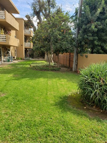 1560 Yosemite Dr Studio-1 Bed Apartment for Rent Photo Gallery 1