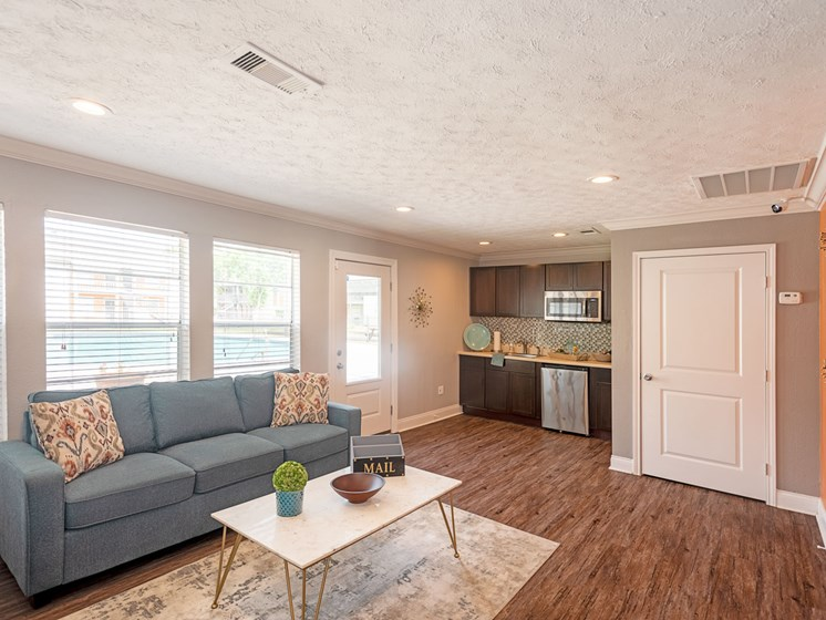 Natural Light, Sofa In Living Room at Summerstone Apartments, Texas, 77901