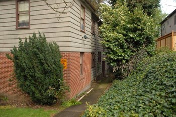 436 NE 63Rd Ave 1-2 Beds Apartment for Rent Photo Gallery 1