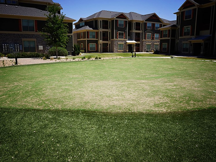 Beautiful Lawn at Faudree Ranch