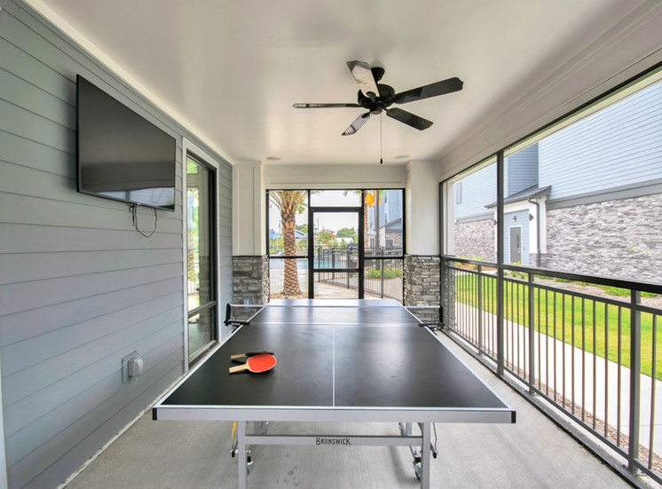 Vintage Winter Park  Ping Pong table