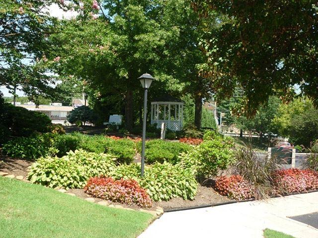 Mountain View garden.