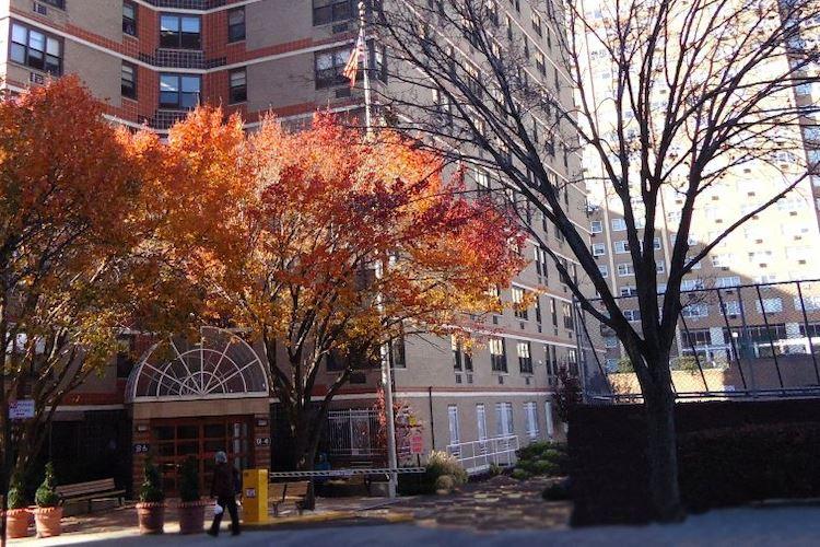 B'nai B'rith of Flushing Queens, NY autumn trees