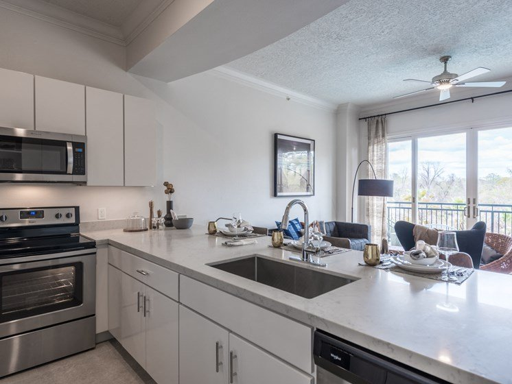 model kitchen apartments in downtown houston