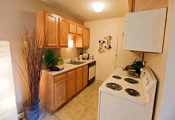 6935 S Timber Ridge Lane Studio-2 Beds Apartment for Rent Photo Gallery 1