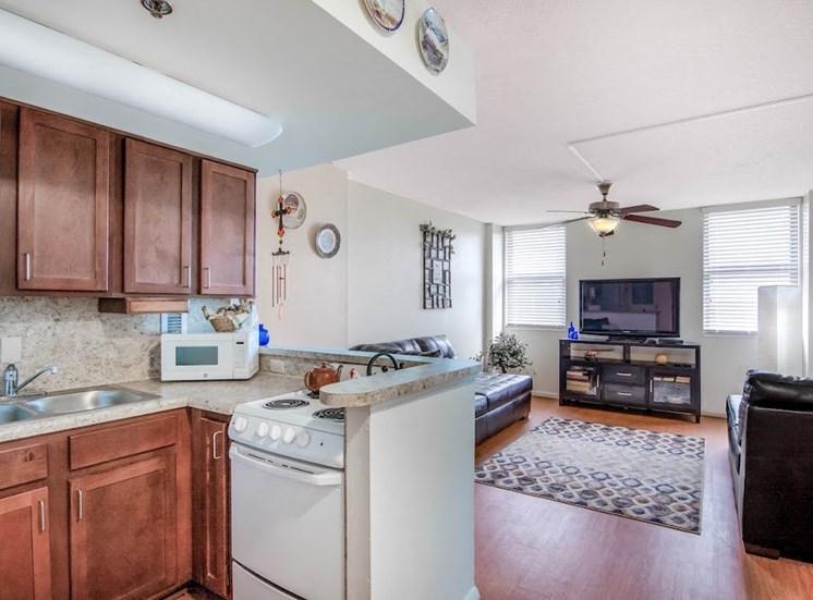 open concept kitchen at Mount Carmel Gardens