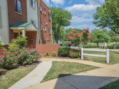 6374 Beryl Road 1-2 Beds Apartment for Rent Photo Gallery 1