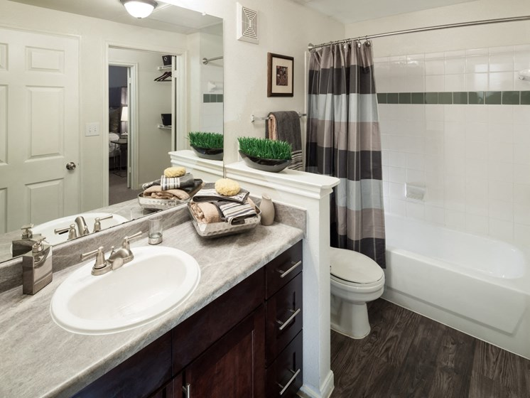 bathroom apartments in north austin