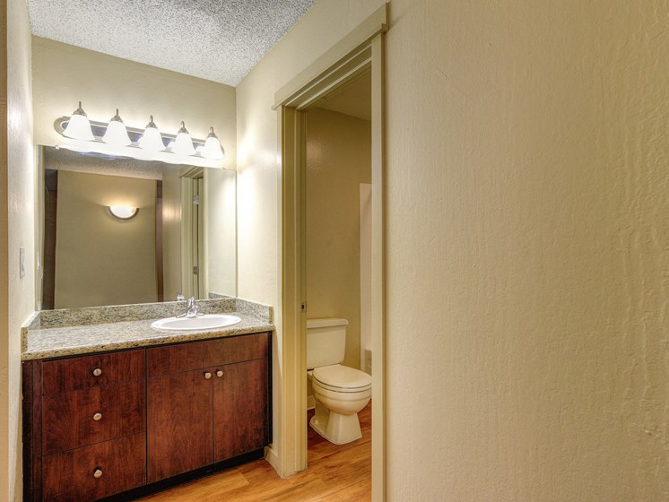 Luxury Apartment Community Bathroom and Vanity