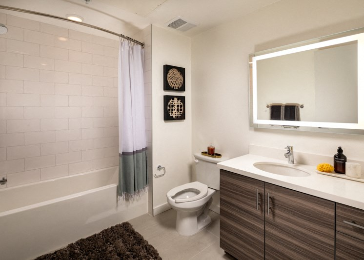 Picasso Brentwood Master Bath Mirror