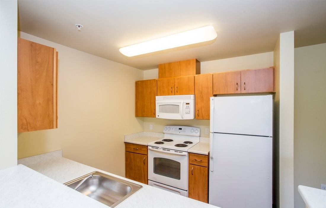 Fully Equipped Kitchen with Refrigerator, Microwave and Dishwasher