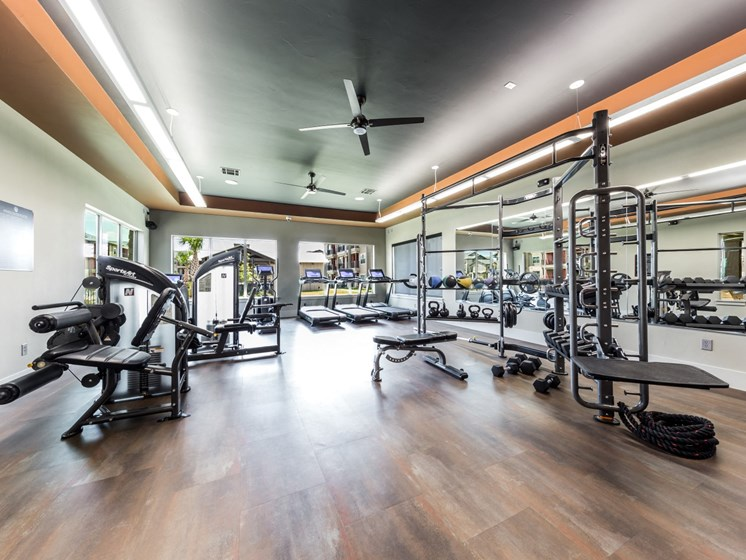 Fitness Center With Modern Equipment at Legacy Creekside, San Antonio, 78245