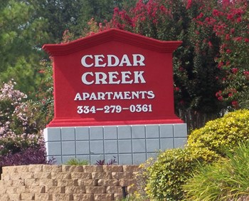 4233 Cedar Creek Cirle Studio-2 Beds Apartment for Rent Photo Gallery 1