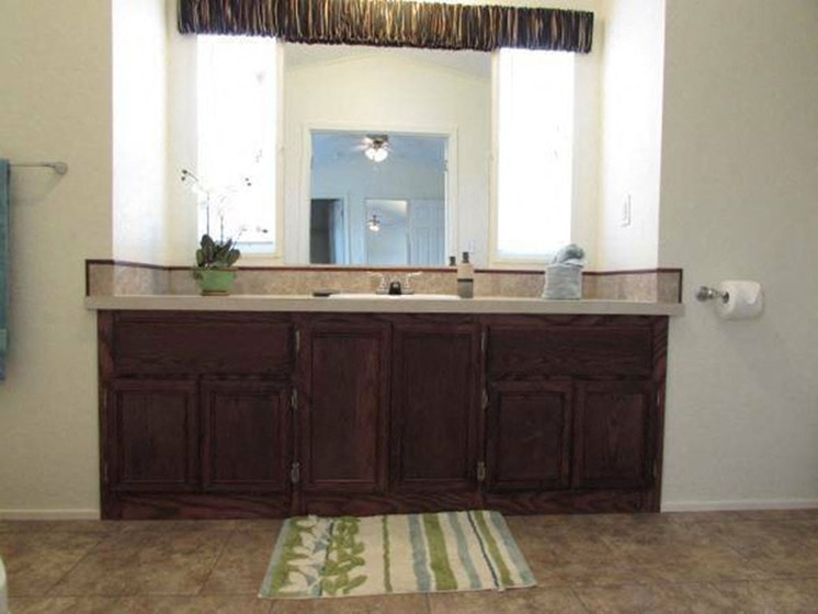 Master Bathroom Sink and Counter at Maple Grove Rental Home Community in Lincoln, NE