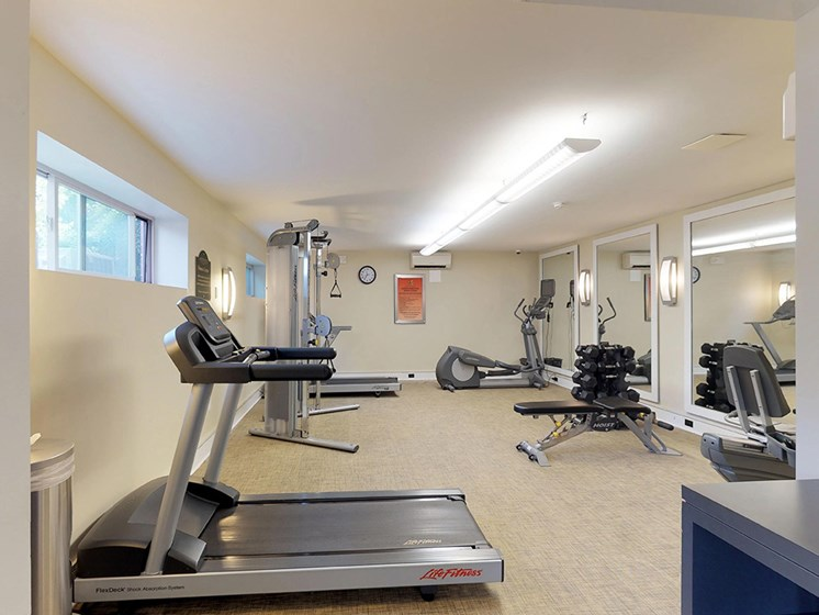 residential gym area with treadmill and various other types of equipment