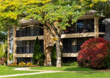 49000 Denton Road 1-2 Beds Apartment for Rent Photo Gallery 1