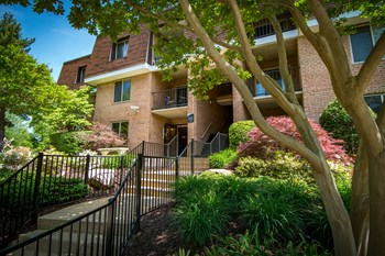3347 Willow Crescent Drive 1-3 Beds Apartment for Rent Photo Gallery 1