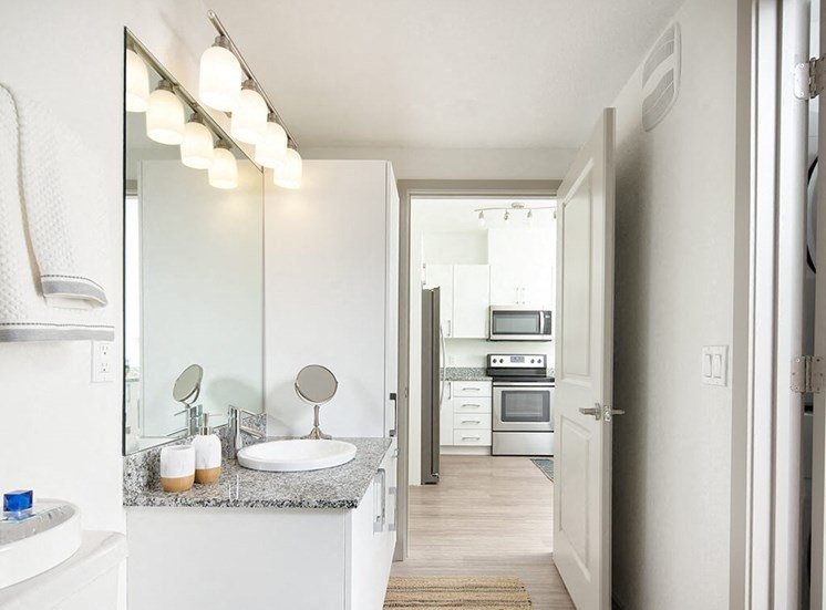 Custom Look Bathroom at Lake Monroe Apartments, Sanford, 32771