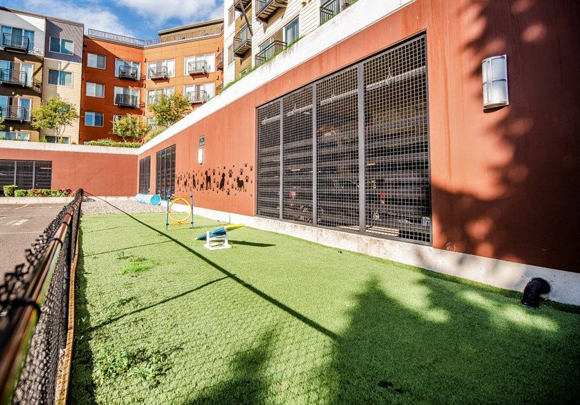 Kent Apartments - The Platform Apartments - Dog Park