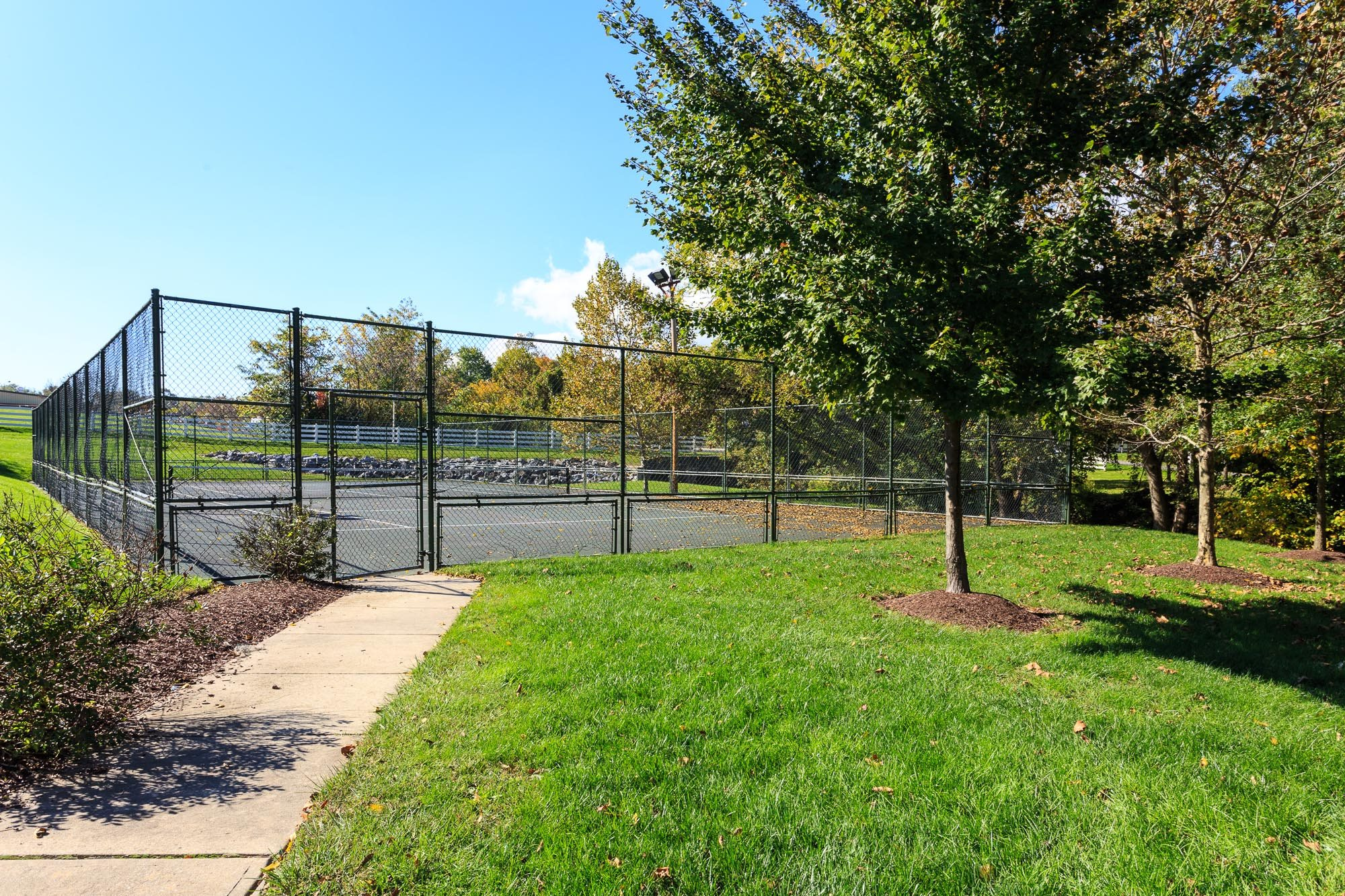 Tennis Court at The Residences at the Manor Apartments, Maryland