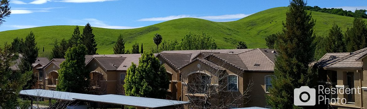 Contact Rolling Oaks Apartment Homes For Rent In Fairfield Ca