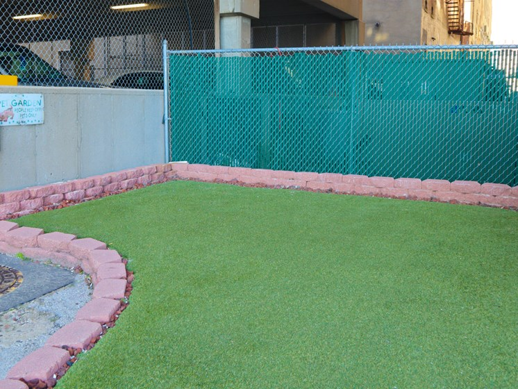 Outdoor Pet Park at Commodore Perry Apartments in Downtown Toledo, OH