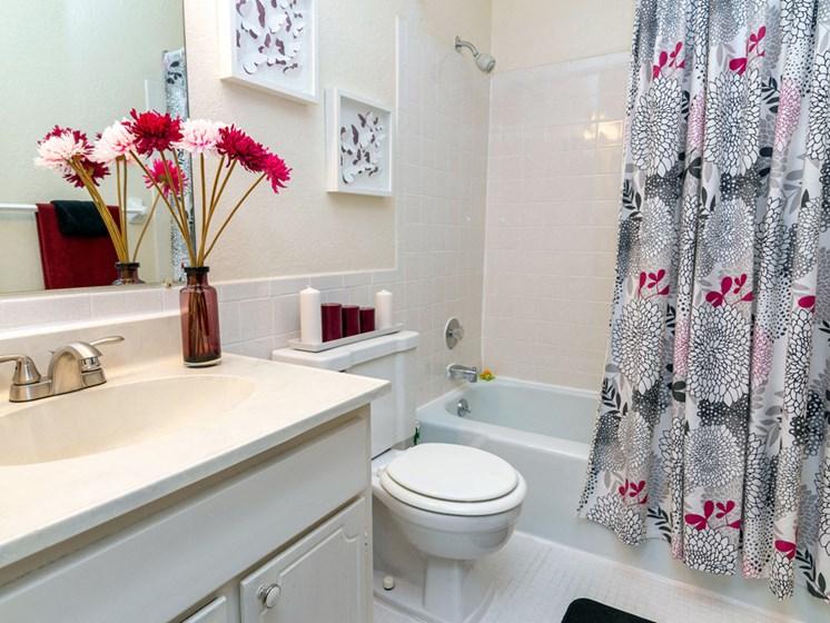 Apartments in Saginaw, MI Bath3