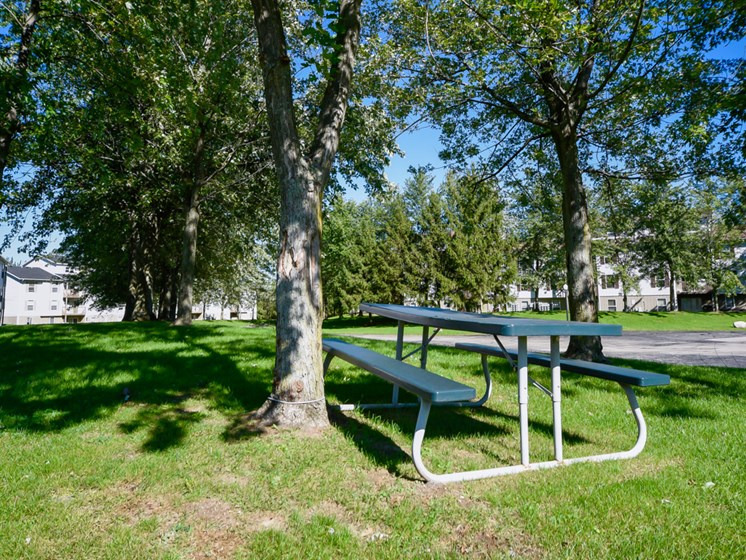 Pet Friendly Community At Crown Pointe Apartments In Holland, MI