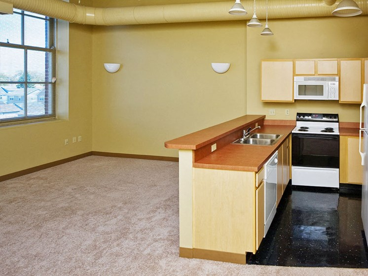 Apartments In Cleveland, Ohio Kitchen