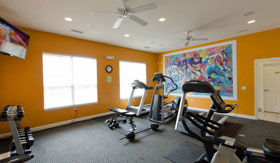 Fitness Center of Apartments in Norton Shores